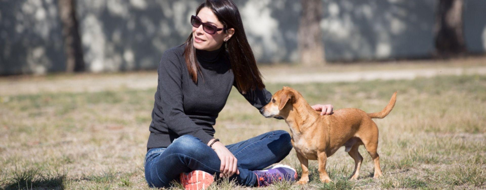 ¿A qué edad entra en celo/es fértil un perro?