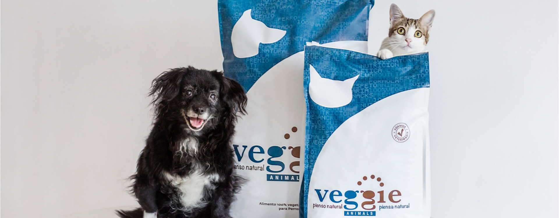 10 reasons to feed VeggieAnimals to your dog and cat: